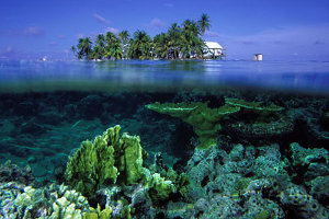 Cayes and Coral in Belize